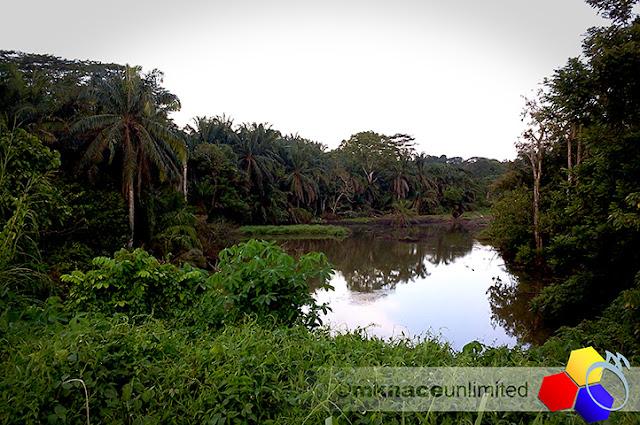 mknace unlimited | Kolam memancing Gelang Patah
