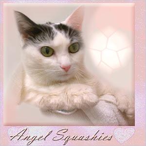 RIP Squashies