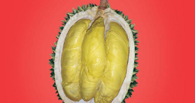 Durian Petruk (Jepara, Jawa Tengah) - www.jurukunci.net