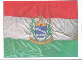 Bandeira de minha cidade