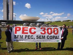 Sgt. Ricardo e companheiros PMs e BMS de todo o Brasil, na luta pela PEC 300 20 e 21/08/13 -foto 2