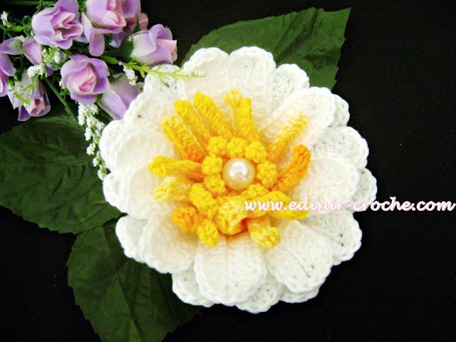 flores em croche vitoria regia dvd video aula frete gratis edinir-croche