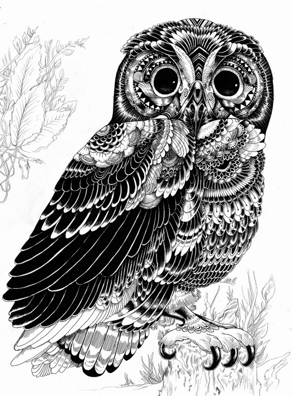 15-Iain-Macarthur-Precision-in-Surreal-Wildlife-Animals-Drawings-www-designstack-co