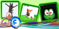 Animations Display Picture – Dancing Cat – Jumping Cat – Fall in Love Frog | gif | Blackberry Messenger Avatar | Fadli Jabir | Blackberry animasi | Funny Cartoons | Blackberry Animations