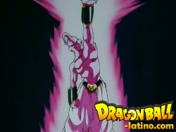 Dragon Ball Z capitulo 256