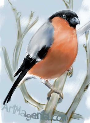 Domherre är en fågel tecknad av Artmagenta