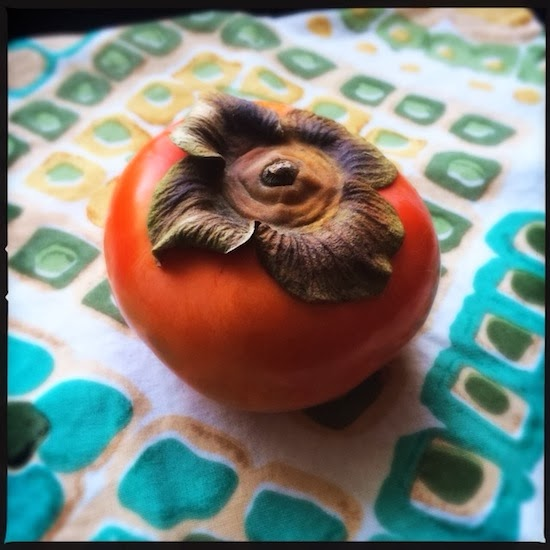 For the love of persimmons