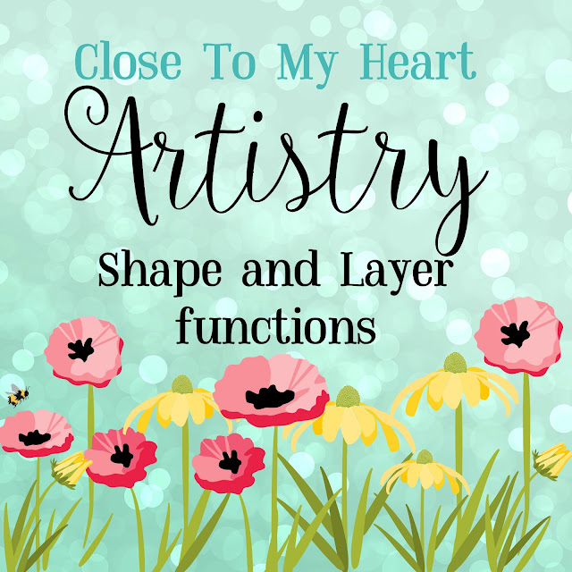 Artistry Shape and Layer function video