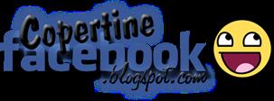 Copertine facebook