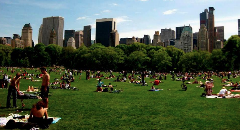 NEW YORK CON NIÑOS: CIRCUITO DE 3 DÍAS - Chicas en New York