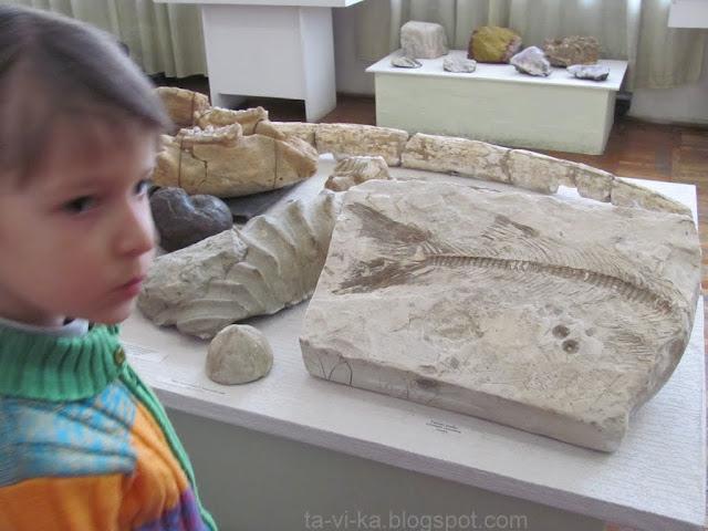 Геокешинг: Центральный Музей Тавриды