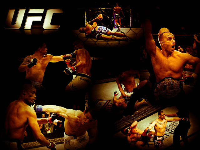 ufc mma fighter wallpaper picture
