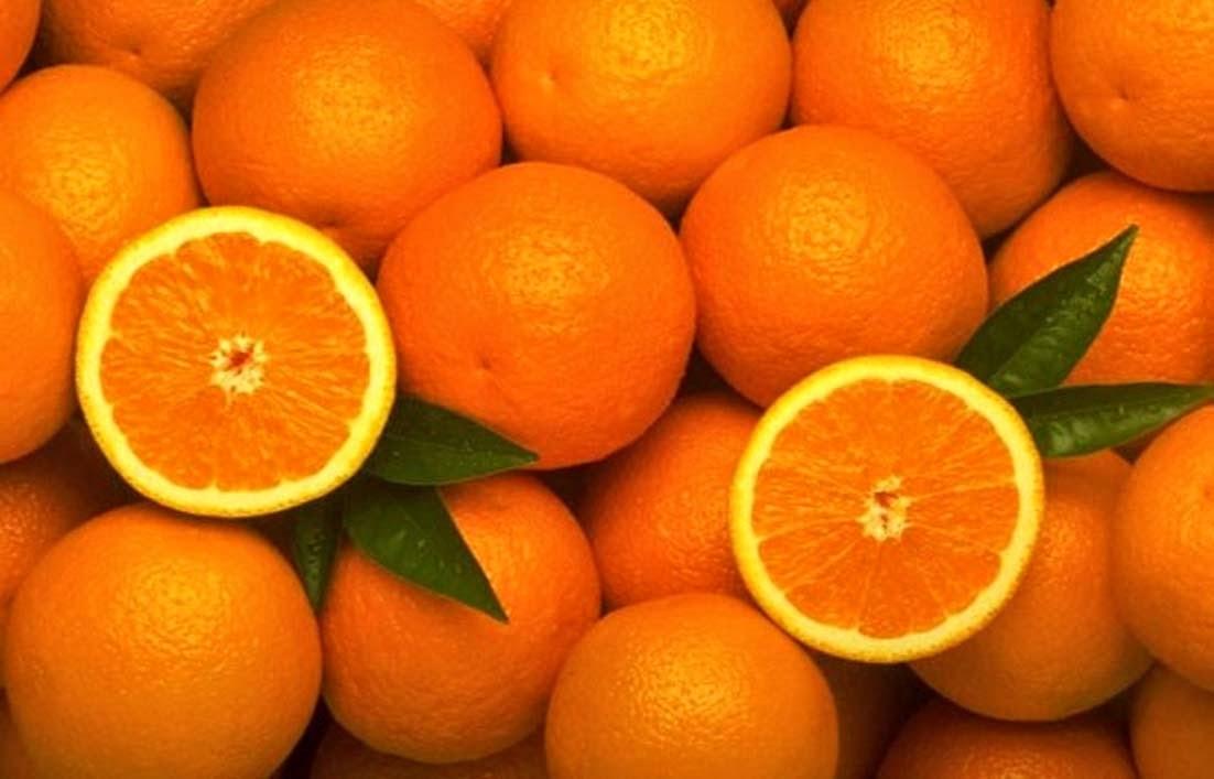Jeruk Buah yang Baik untuk Ibu Hamil Muda