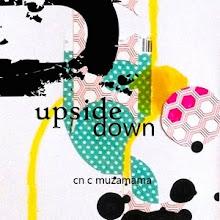 СП Upsidedown