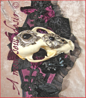 ceinture bijou crâne animal vanité vanités gothique gothic taxidermie curiosité anatomie bizarre taxidermy anatomy curiosity animal skull belt goth gothik vanity still life