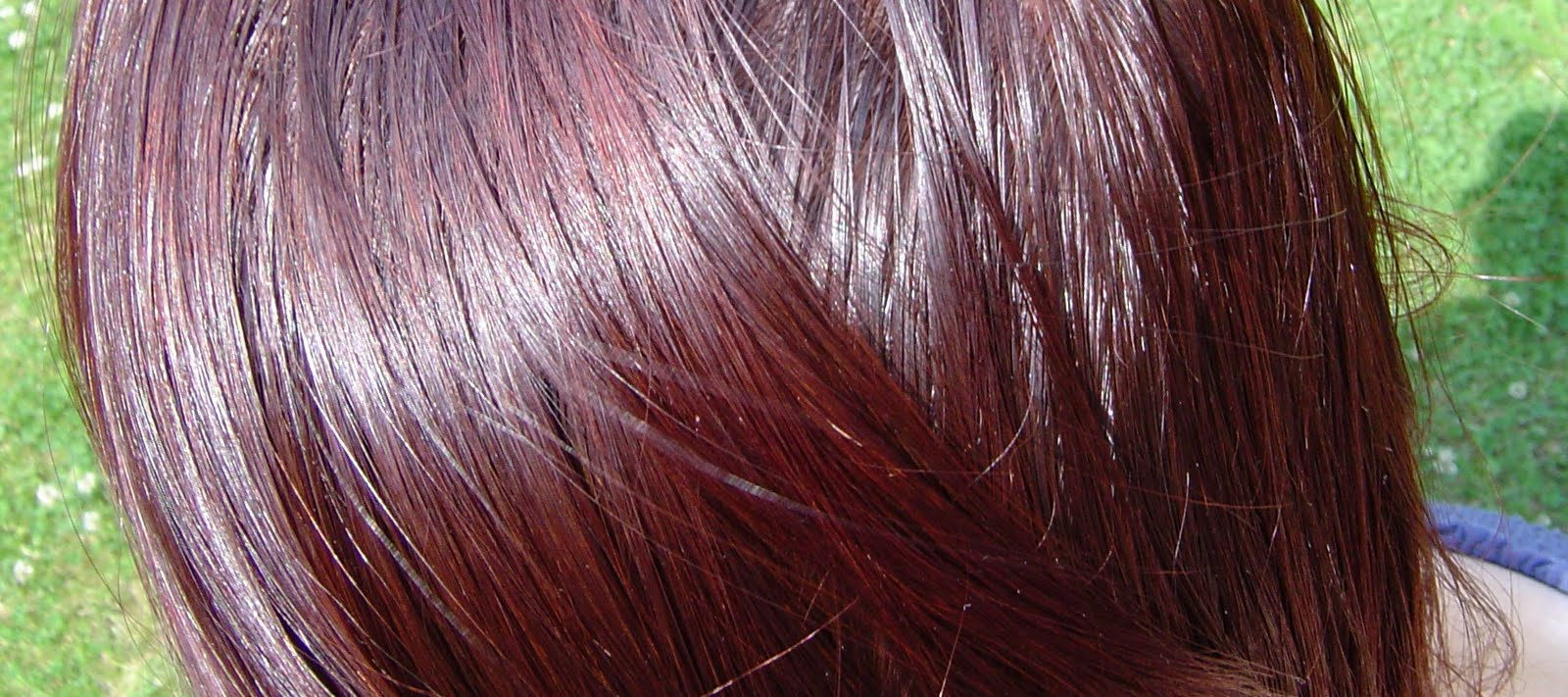 Цвет хны на темных волосах