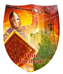 Escudos y espadas de Olite