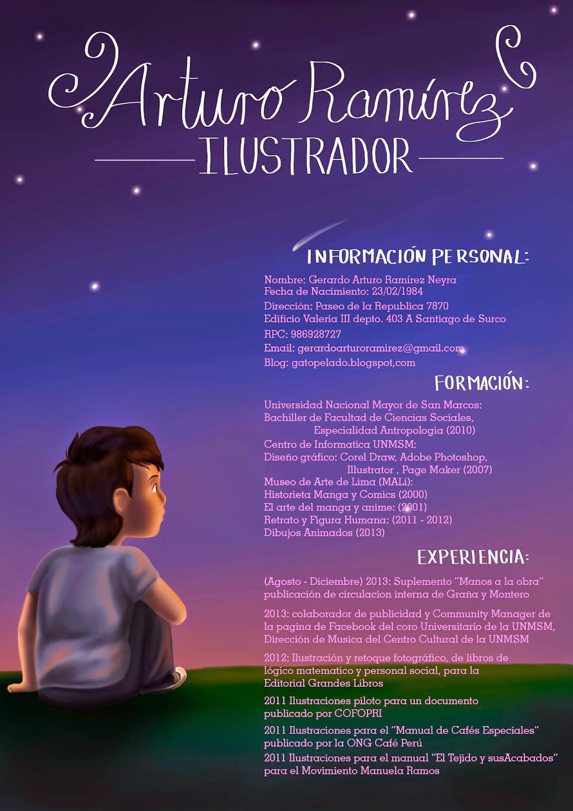 Curriculum Vitae | GATO CALVO