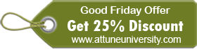 Good Friday Offer- 25% Discount