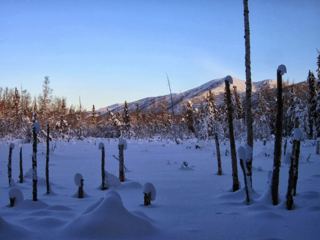 Each day an adventure in alaska belated christmas greetings beautiful blue skies equals coldcold weather kristyandbryce Gallery