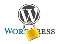 updating wordpress site