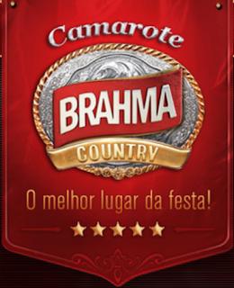 FESTA DO PEÃO DE BARRETOS 2013- CAMAROTE BRAHMA