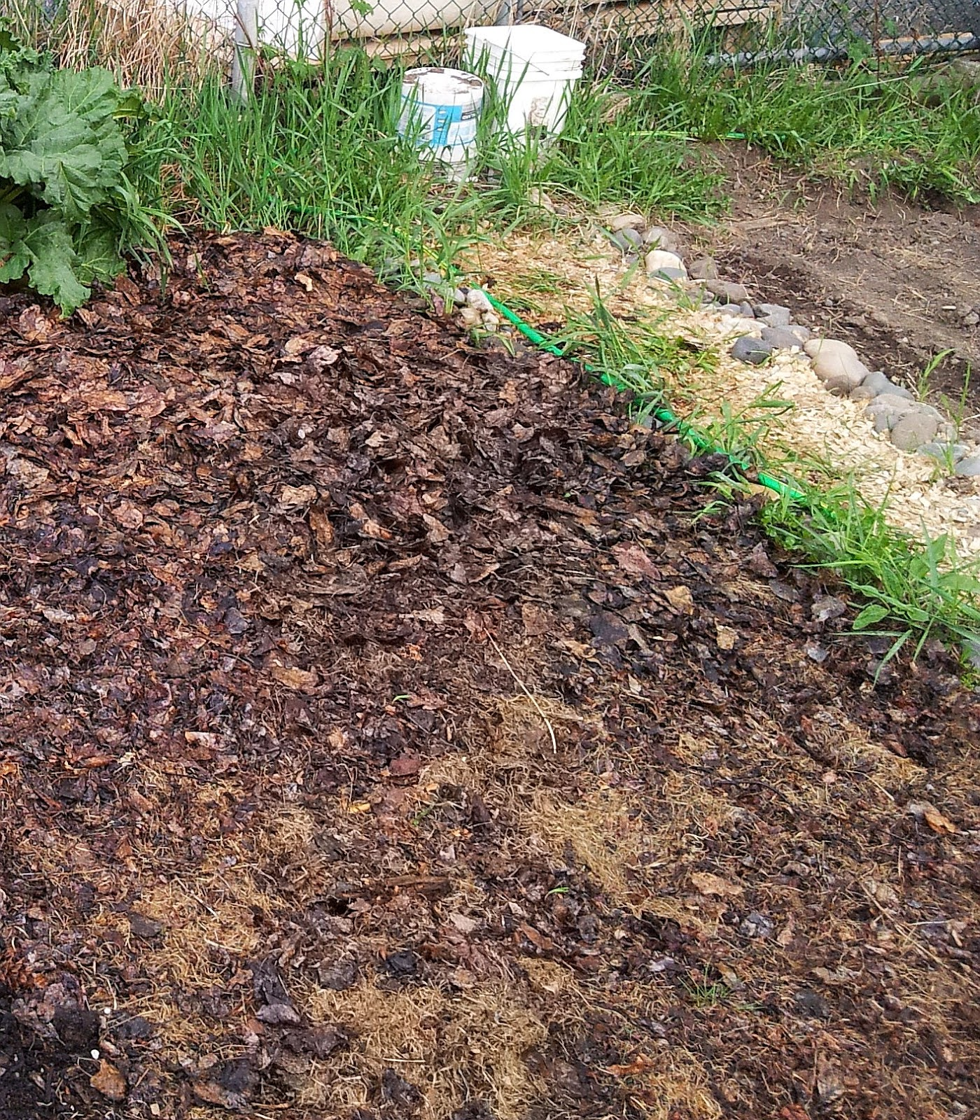 Planting In Our No Till Lasagne Garden Adventures In