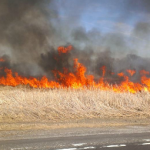 photo of Spring grassfire