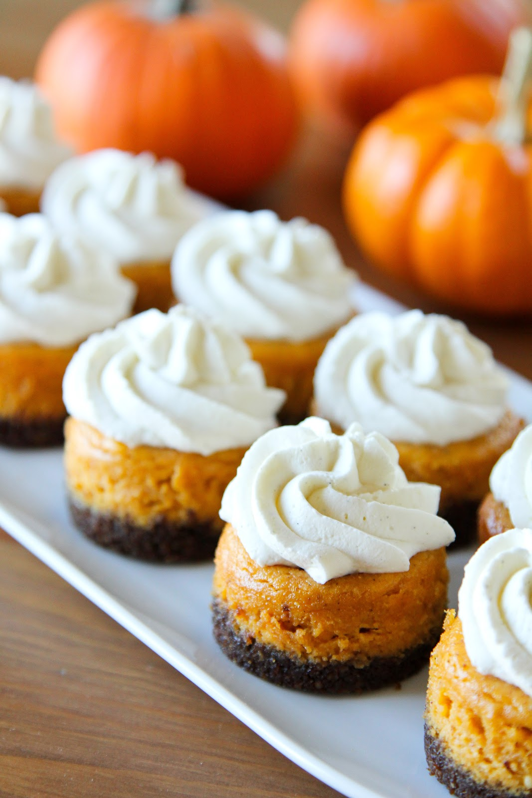 Mini Pumpkin Cheesecake Bites Oh my these mini pumpkin