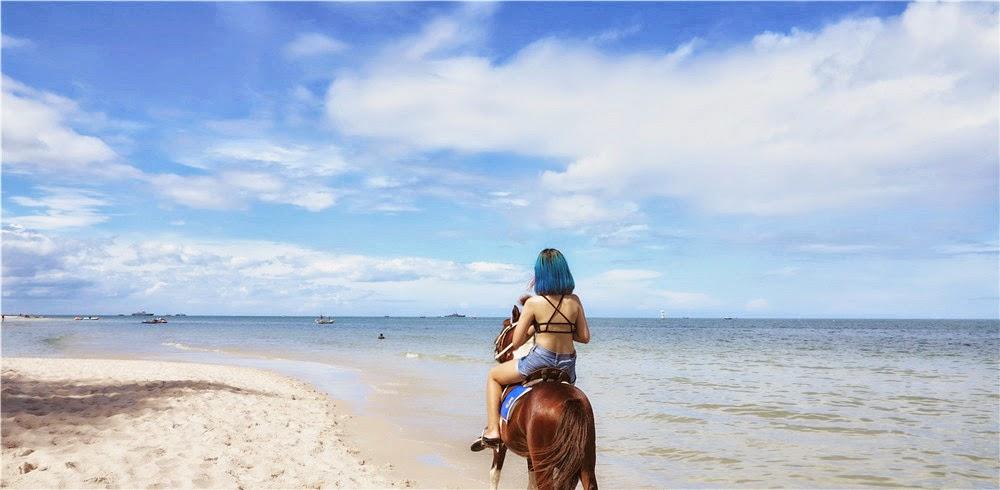 Hua Hin Beach Horse