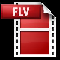 flv logo