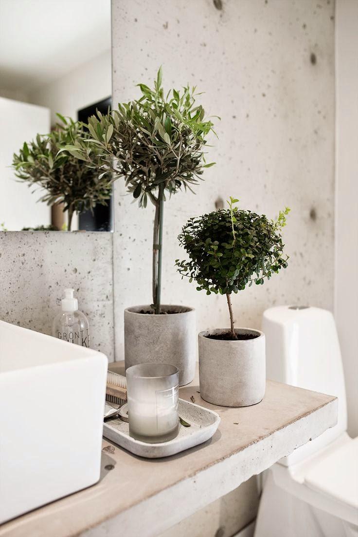 decoracao-casa-banho-wc-banheiro-plantas