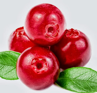 Buah Cranberry (Google)