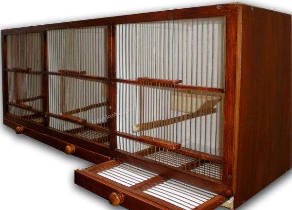 burung kicauan aneka box atau kandang ternak kenari