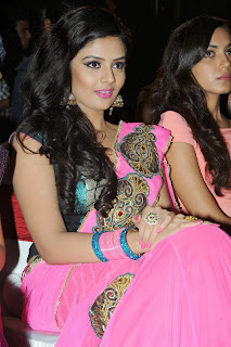 Actress Sri Mukhi Pictures in Saree at Prema Ishq Kadhal Movie Audio Launch  0071.jpg