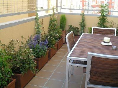 Vida a lo verde living in green terrazas con flores un - Plantas para terrazas ...