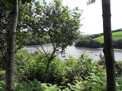 River Fowey at Golant Cornwall