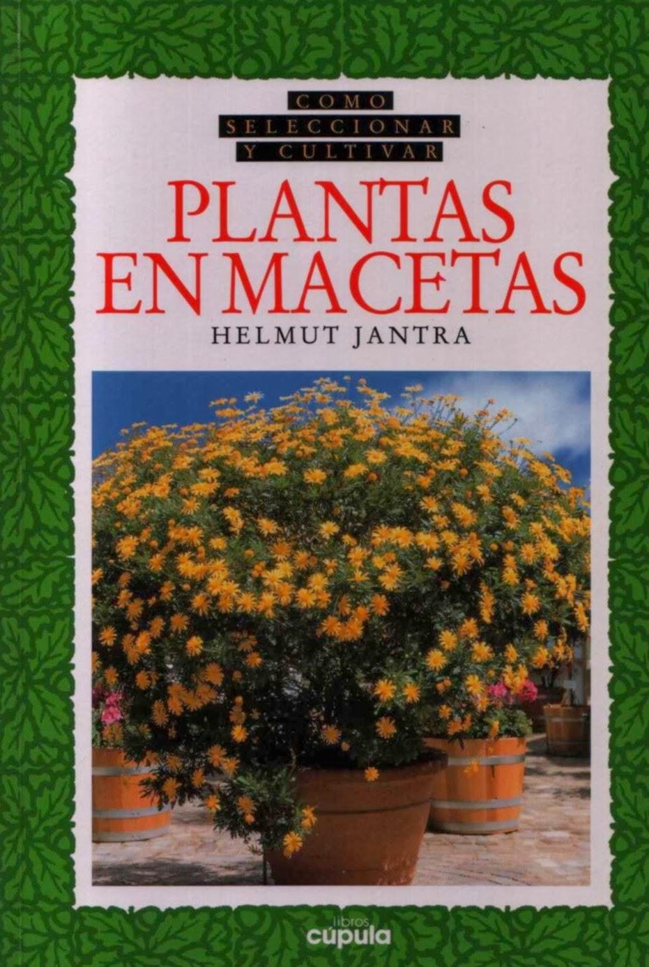 Agro files and various en internet como seleccionar y for Como cultivar plantas ornamentales