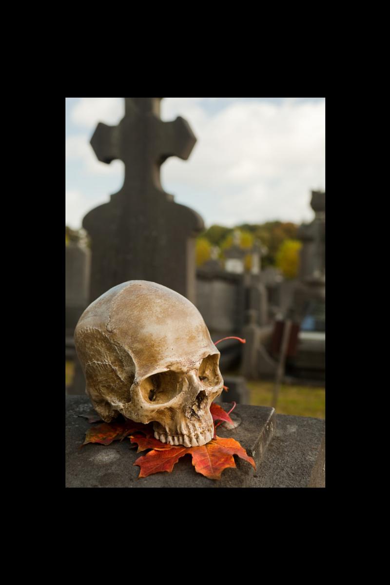 Halloween horror graveyard