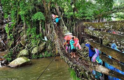 جسر الشجرة: من أكثر المعابرالمخيفة