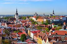 Goboogo Travel Toompea Hill In Estonia