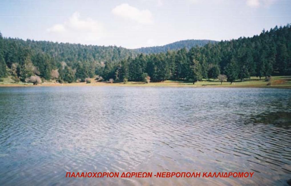 ΝΕΒΡΟΠΟΛΗ