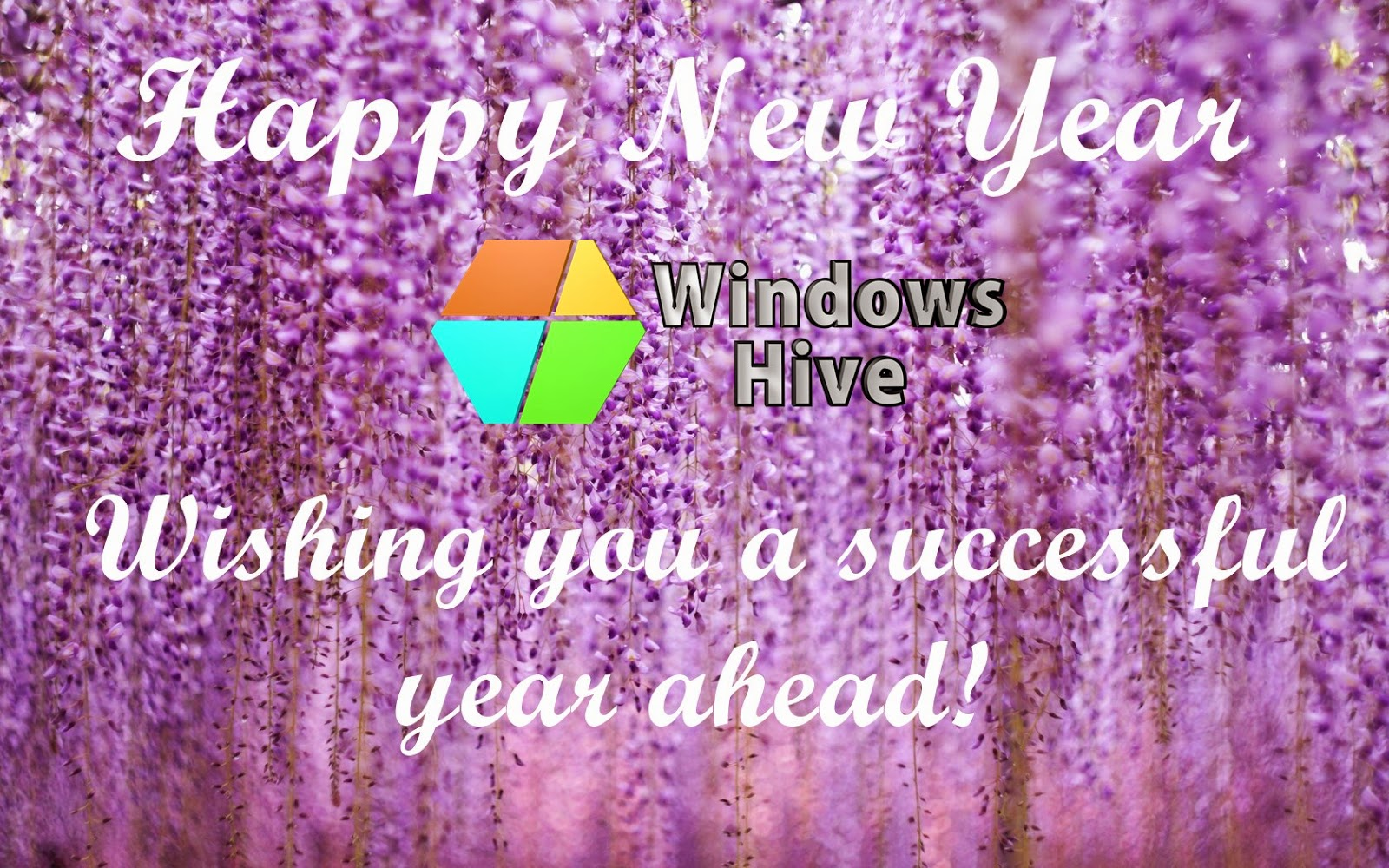 Happy new year from.windows hive