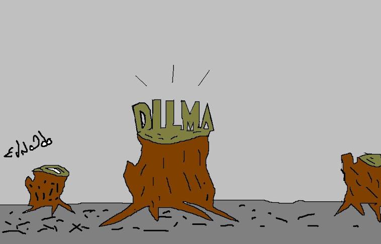 PRES:DILMA APOIA NOVO COD.: FLORESTAL.