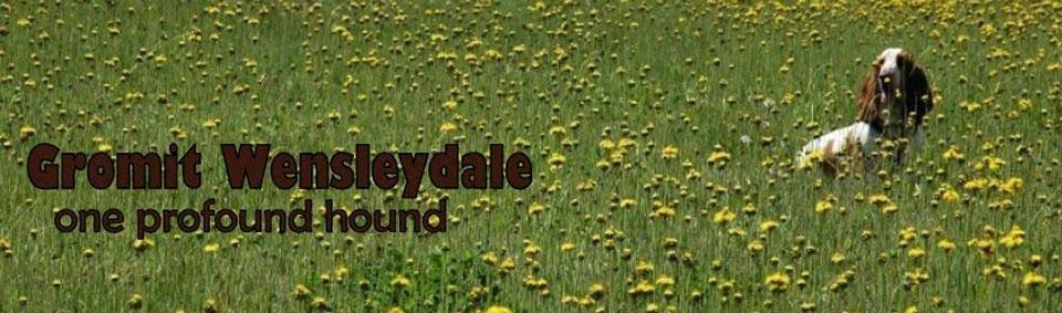 Gromit Wensleydale - One Profound Hound