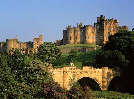 Alnwick Castle & Gardens