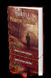 Haikús y Primeros intentos