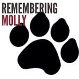 Justice For MOLLY