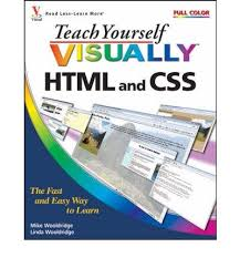 teach yourself visually html and css beginner book