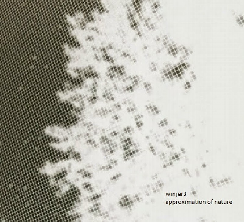 Check out our new release Approximation of Nature - Winjer3